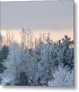 Sunrise Glos Behind Trees Frozen Trees Metal Print