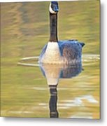 Sunrise Goose Metal Print