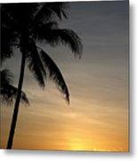 Sunrise In Florida / D Metal Print