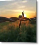 Sunrise In June  Metal Print