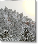Sunrise In Snowstorm In The Pike National Forest Metal Print