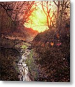 Sunrise In The Forest Metal Print