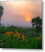 Sunrise In The Swamp-2 Metal Print
