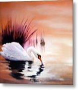Sunrise On Swan Lake Metal Print