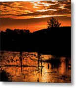 Sunrise Over A Pond Metal Print