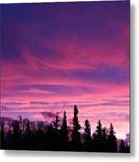 Sunrise Over The Trees Metal Print