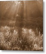 Sunrise Sepia Metal Print