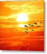 Sunrise / Sunset / Sandhill Cranes Metal Print