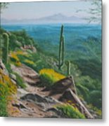 Sunrise Trail Metal Print