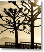 Sunrise Trees Metal Print