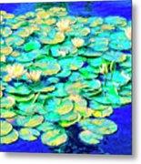 Sunrise Waterlilies Metal Print