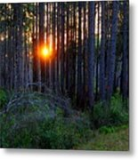 Sunset Along The Florida Trail - St.marks Metal Print