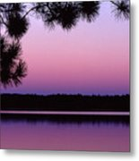 Sunset And Pine 2 Metal Print