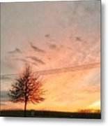 Sunset And Tree Metal Print