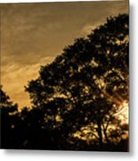 Sunset And Trees - San Salvador Metal Print