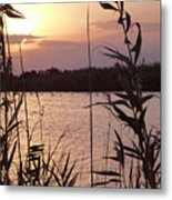 Sunset And Water Metal Print