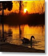 Sunset At Copper Canyon Ranch Metal Print