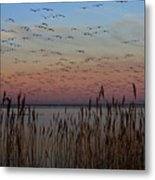 Sunset At Forsythe Metal Print