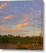 Sunset At Vineyard Metal Print