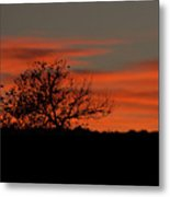 Sunset At Zion Metal Print