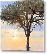 Sunset Behind Acacia Tree Digital Watercolor Metal Print