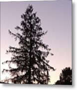Sunset Behind The Pines Metal Print