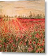 Sunset By The Poppy Fields Metal Print