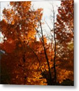 Sunset By The School House Metal Print