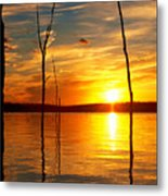 Sunset By The Water Metal Print