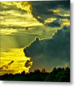 Sunset Cloud Animal Metal Print