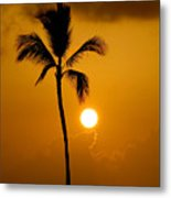 Sunset Coconut Palm Maui Hawaii Metal Print