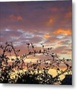 Sunset Colors To The West Metal Print