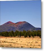 Sunset Crater Volcano National Monument Metal Print