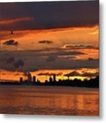 Sunset Flight Of The Tern Metal Print