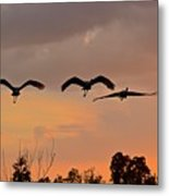 Sunset Fly Over Metal Print