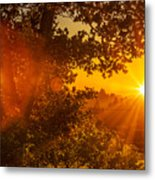 Sunset Fog Over The Pacific #3 Metal Print