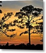 Sunset For One Metal Print