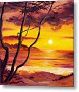 Sunset From A Carmel Cypress Tree  Metal Print