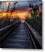 Sunset In Meaher Park #102 Metal Print