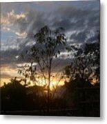 Sunset Leaves 5 Metal Print