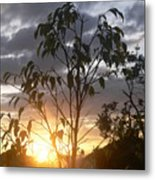 Sunset Leaves 7 Metal Print