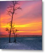 Sunset Light Metal Print