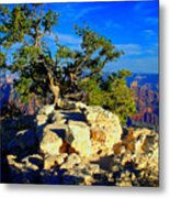 Sunset On The North Rim - Grand Canyon Metal Print