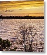 Sunset On The Wetlands Metal Print