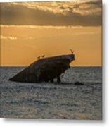 Sunset On The Wreck Of The Concrete Ship Atlantus Metal Print