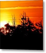 Sunset Over Hatteras Maritime Forest Metal Print