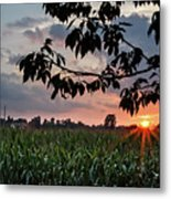 Sunset Over The Plains Metal Print