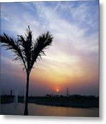 Sunset - Palm Tree Metal Print