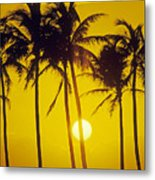 Sunset Palms And Family Metal Print
