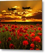Sunset Poppies Fighter Command Metal Print